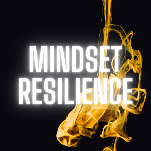 business coaching mindset resilience  sabrina godi hitschler